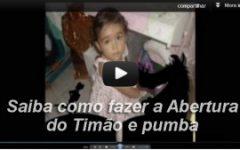 Como fazer a Abertura do Timão e Pumba